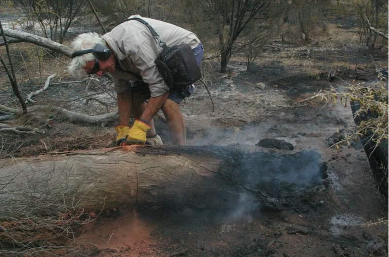 photo i bushfire